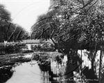 Picture of Berks - Bracknell, Binfield Road c1910s - N1148
