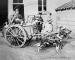 Picture of Misc - Milkmen and Dog Cart c1900s - N1129
